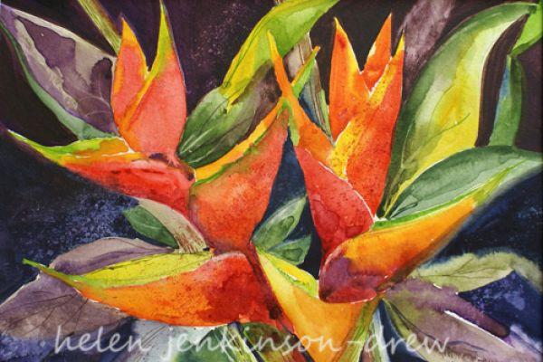 exoticflowers2E79236A5-BEBB-3F6D-011F-4F4E86E05499.jpg