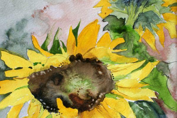sunflowers-sm8603AF8B-EA00-8FA0-22CA-587A7756F9F0.jpg